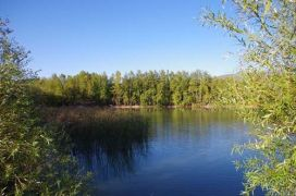 ISUBÜ'lü öğrenciler göl temizliği yapacak
