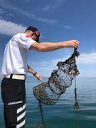 Eğirdir Gölü'nde 150 kaçak kerevit sepeti ele geçirildi
