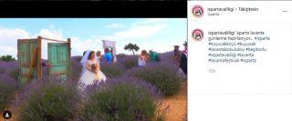 Türkiye'nin çiçek bahçesi Isparta için sosyal medyada lavanta daveti