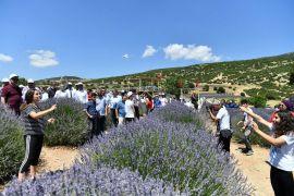 Mora bürünen lavanta bahçelerinde spor keyfi