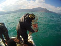 İç sularda kerevit av yasağı başlıyor