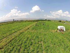 Isparta'da sulama sezonu başladı