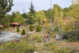 Isparta'da atıl durumdaki mesirelik alan yeniden düzenleniyor