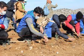 Isparta'da 20 bin fidan toprakla buluşturuldu