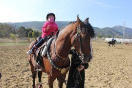Isparta'da atla terapi 4 yaşındaki engelli Ekin'e şifa oluyor