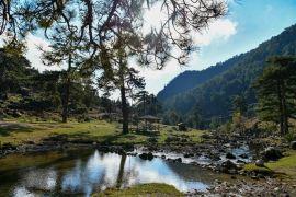 Başpınar Tabiat Parkı tam bir oksijen deposu