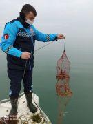 Eğirdir Gölü'nde 386 kerevit pinterine el konuldu