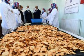 Gelendost'ta kadınlar bir araya geldi, elma kurutma tesisi açtı