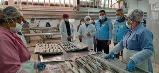 Isparta'da su ürünleri av yasağına uymayan 2 işletmeye 10 bin 910 TL ceza