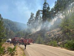 Isparta'da alev alan tırdan ormana sıçrayan kıvılcımlar yangına neden oldu